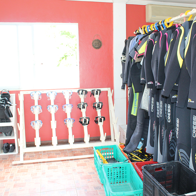 img-diving-12